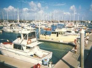 Hervey Bay Boat Harbour - Hervey Bay Tourist Information