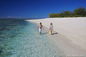 Stroll along the beautiful white sand beaches at Lady Elliot Island Eco Resort
