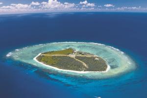 Lady Elliot Island Day Trip - Explore nature's beauty