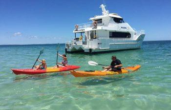 Fraser Island cruising - BBQ & Beach cruising with Whalesong cruises