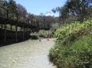 Visit Eli Creek on the Fraser Explorer One Day Tour