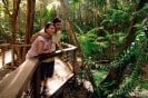 See the decades old rainforest on the Fraser Experience One Day Tour