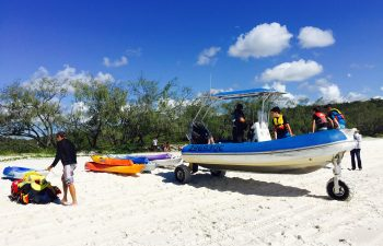 With a special land and water craft you can access the beach on Fraser Island easily on this tour