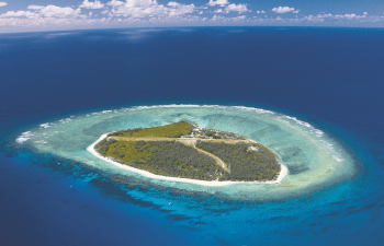 Explore nature's beauty on this Lady Elliot Island day trip of a lifetime!