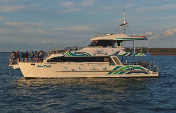Quick Cat II Whale Watching boat has many awesome features